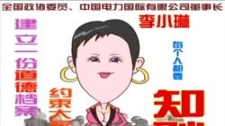火墙内外: 李小琳身陷掮客门 众网民揭批女强人