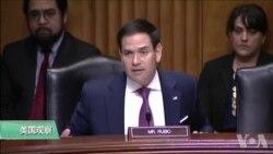 VOA连线(李逸华):美议员再抨击中国窃取知识产权 反对协助中兴公司