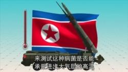 朝鲜离炭疽武器有多远?