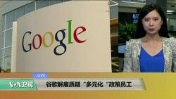 "VOA连线:谷歌解雇质疑""多元化""政策员工"