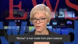 News Words: Biofuel