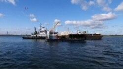 纽约人用回收马桶恢复牡蛎礁