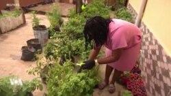 Les Nigérians se tournent vers l'agriculture à cause du coronavirus