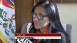 藏人行政中央指责中国滥用否决权