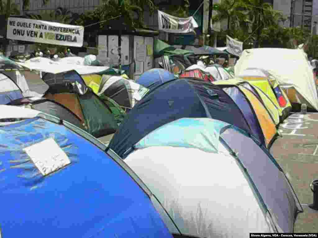 Miles de estudiantes decidieron acampar frente a la sede de la OEA y la ONU, en Caracas, como medida de presión para que estas organizaciones envíen grupos de observadores a Venezuela.