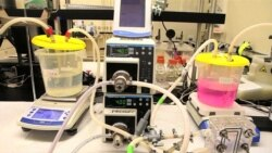 Nanotechnology Can Help Deliver Affordable, Clean Water