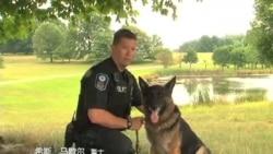 警官警犬好搭档(一) 马歇尔-Boomer在训练场上