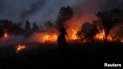 A firefighter tries to extinguish a fire in Ogan Ilir regency, South Sumatra, Indonesia, Aug. 4, 2017. Antara Foto/Nova Wahyudi/ via Reuters