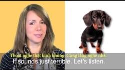 Thành ngữ tiếng Anh thông dụng: Dog Eat Dog (VOA)