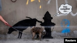A dog urinates on a new work by British graffiti artist Banksy on West 24th street in New York City, October 3, 2013. Three new works by the street graffiti artist have appeared in New York City this week after Banksy announced a month-long residency in N