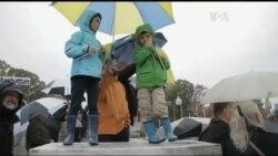 Ось чому 2015-й був роком української культури у США. Відео