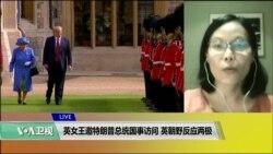 VOA连线(江静玲):英女王邀特朗普总统国事访问,英朝野反应两极