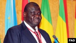FAO Assistant Director-General Bukar Tijani says more youth are needed in agriculture. Credit: FAO