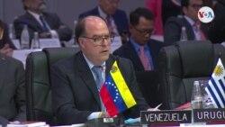 """Borges: """"Venezuela pagara deuda a OEA"""""""