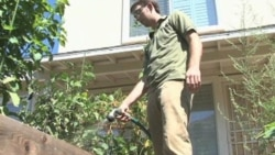 Company Helps Home Gardeners