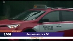 Des toits verts à Washington