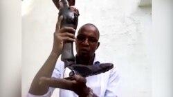 Des prothèses adaptées aux peaux noires