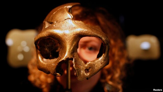 FILE - A girl looks through the replica of a Neanderthal skull displayed at the Neanderthal Museum in Krapina, Croatia.