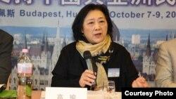 高瑜2012年10月在布达佩斯全球支持中国和亚洲民主化论坛大会上演讲(民主中国阵线总部理事李震拍摄)