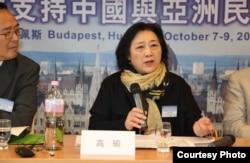 资料照:高瑜2012年10月在布达佩斯全球支持中国和亚洲民主化论坛大会上演讲