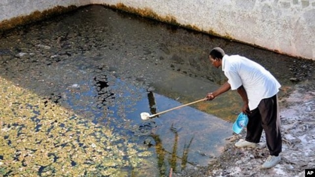 A mosquito scout samples an abandoned pool in Malindi for mosquito larvae; Pools in empty resort homes become a breeding ground for mosquitos during the rainy seasons