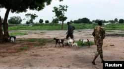 FILE - A soldier from Sudan People's Liberation Army-In Opposition (SPLA-IO) walks goats in Leer, Unity State.