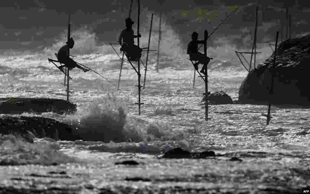 Sri Lankan stilt fishermen work on their poles in the southern town of Galle, July 1, 2017.