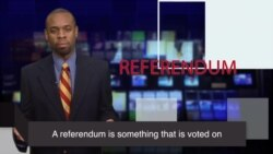 News Words: Referendum