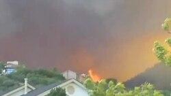 奧巴馬將視察被山火蹂躪的科羅拉多