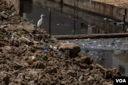 A bird stands atop a mound of rubbish overlooking a polluted canal in Dakar, Senegal, Apr. 23, 2021.