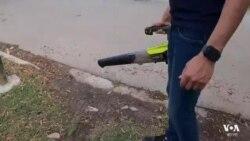 গণমাধ্যমের নজর কেড়েছে টেক্সাস-মেক্সিকো সীমান্তের শহর ডোনা