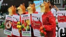 Aktivis vegetarian Korea Selatan mengenakan kostum merah dengan kepala anjing, berunjuk rasa menentang budaya Korea Selatan makan daging anjing di Seoul, Korea Selatan, Kamis, 16 Juli 2020.