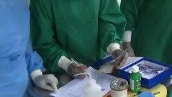 COVID-19: Impacto da pandemia em Moçambique e África do Sul