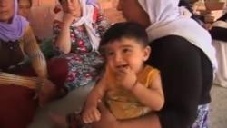ویان دخیل نماینده ایزدیان در پارلمان عراق