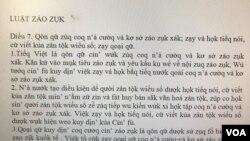 Một ví dụ cải tiến của ông Bùi Hiền. (Hình: M.Q. / trích từ website báo Thanh Niên)