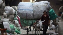 نوای موسیقی نوازندگان مصری برای پاکسازی شهر از زباله ها