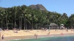 하와이 대형 쓰나미 가능성 경고