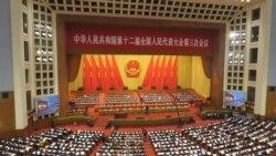 """时事大家谈:经济风险,政治危机,中国人大在""""惊涛骇浪""""中开场?"""