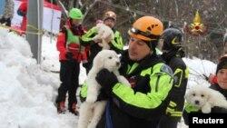 지난 18일 이탈리아 파린돌라 지역에 눈사태가 발생해 관광지 호텔을 덮쳤다. 생존자 수색 작업이 계속되는 가운데 23일 구조대가 사고 현장에서 구조한 강아지 여러 마리를 들고 있다.
