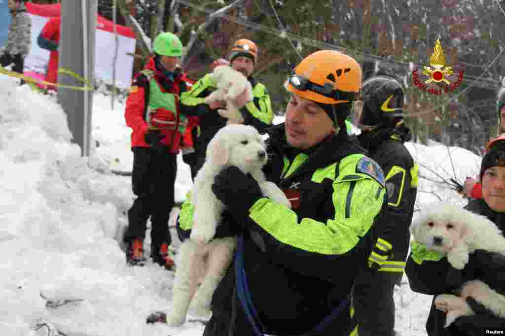Italian firefighters hold puppies rescued from the Hotel Rigopiano in Farindola, central Italy, hit by an avalanche, in this picture released by Vigili del Fuco.