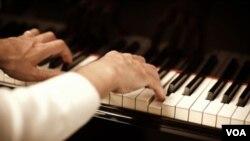 El estudio utilizó una amplia gama de música, desde clásica y jazz hasta punk, tango e incluso gaitas.