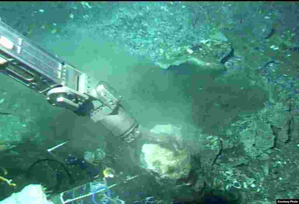 Manipulator arm of Alvin submersible collecting piece of carbonate from the ledge of the methane seep, Costa Rica Margin, 1,000 meters deep. (V. Orphan)