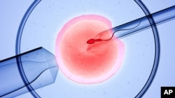 The proposed law would permit doctors to combine male and female cells to create an embryo in unmarried or gay women.