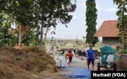 Warga Kulonprogo bersama-sama mengolah hasil panen. (Foto: VOA/ Nurhadi)