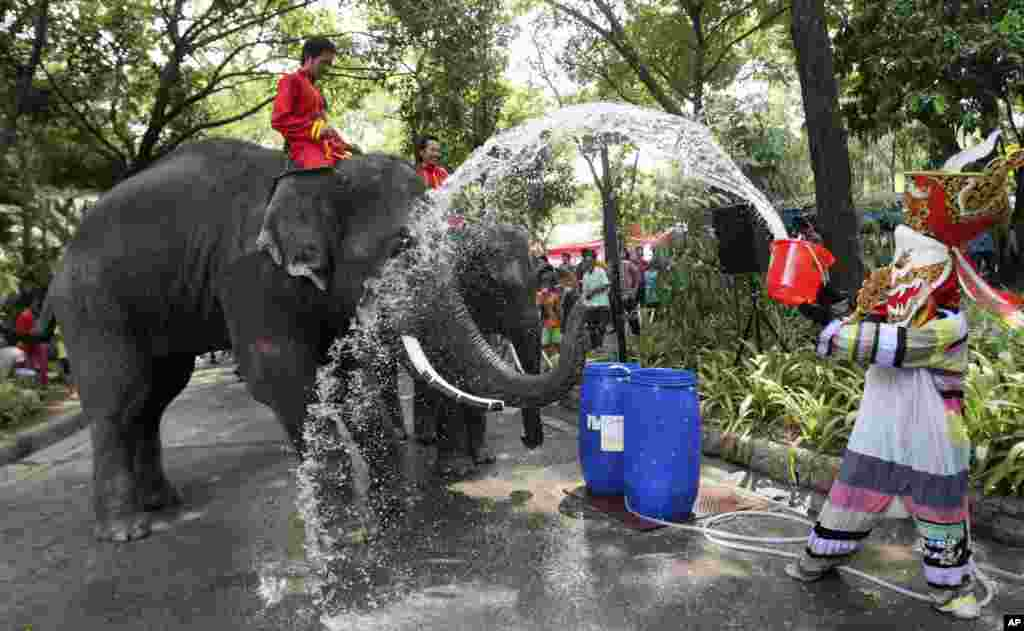 A mascot dressed as a ghost splashes water to an elephant ahead of the Songkran festival, Thai New Year celebration, at Dusit Zoo in Bangkok, Thailand.