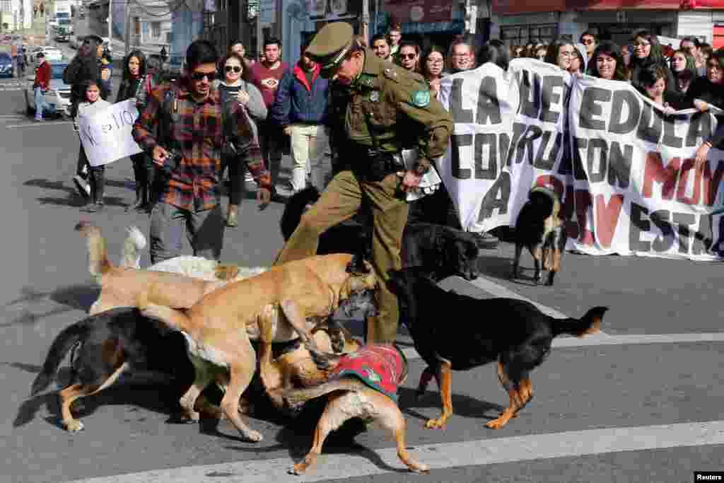 Scena u Valparaisu u Čileu. 16.05.18.