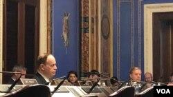 参议员谢尔比(左)主持听证会(美国之音黎堡2019年5月8日)