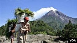Kepala Badan Vulkanologi dan Mitigasi Bencana Kementerian ESDM, Surono menjelaskan, penurunan status ini berdasarkan aktivitas vulkanik Merapi yang terus mereda.