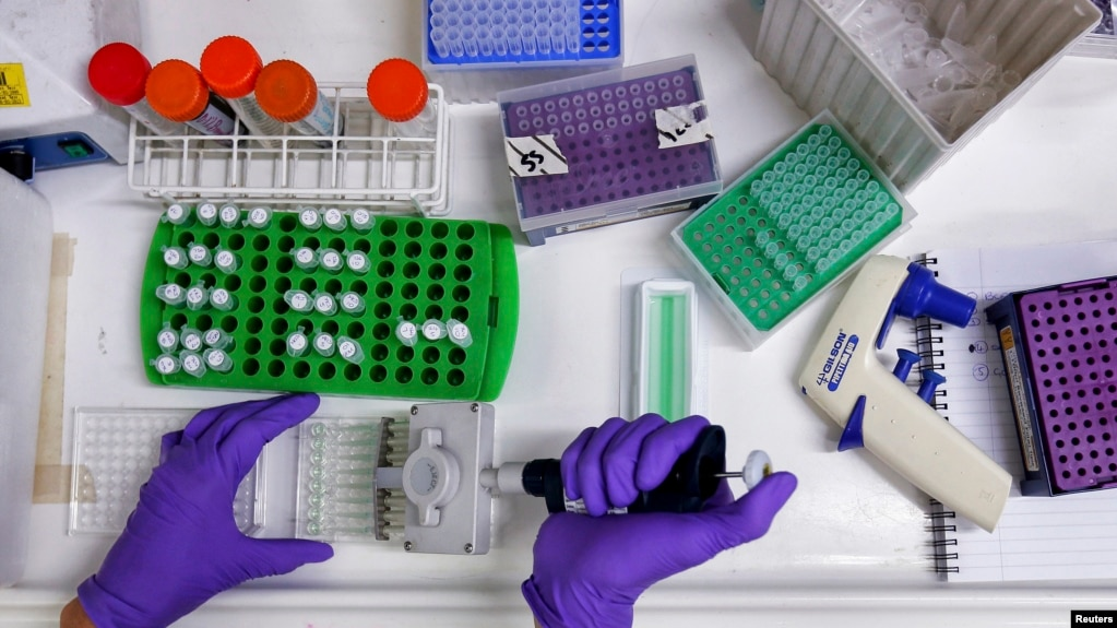 FILE - A scientist prepares protein samples for analysis, July 15, 2013.
