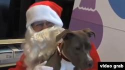 聖誕老人與寵物合影